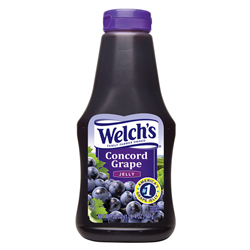 Welch's Concord Grape Jam (566g)