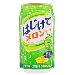 Hajikete Melon Soda (350ml)